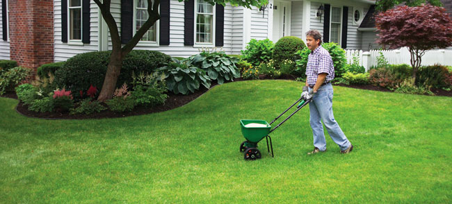 lawn-fertilizer