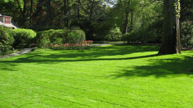 Image Result For Good Nature Lawn Care