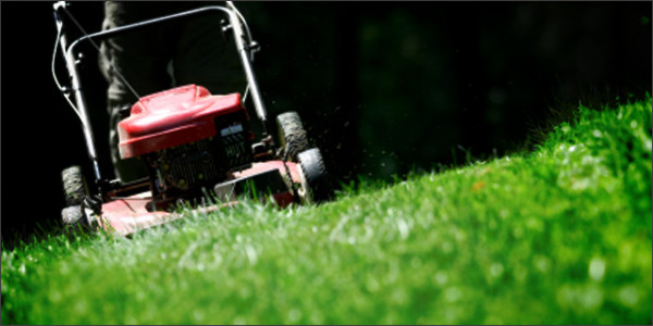 lawnmowing