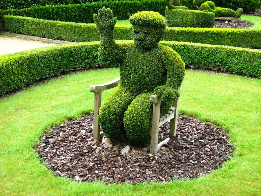 Superior Topiary Ideas Part - 1: Introduction To Topiary